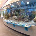 Massena Nature Center