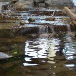 Water display at Massena Nature Center