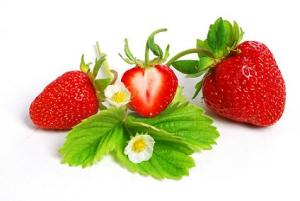 strawberries with leaf and flowers