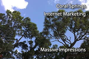 Coral Springs Internet Marketing website