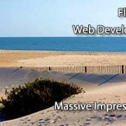 Florida Web Developers