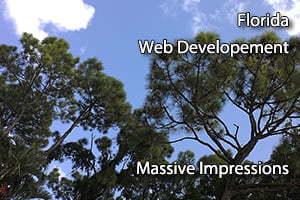 florida web developement