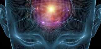 Aktivasi Otak Tengah Bohong ? Misteri Ilmiah