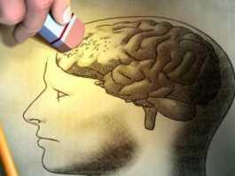 Faktor Yang Mempengaruhi Ingatan - Proses Terjadinya Ingatan Seseorang