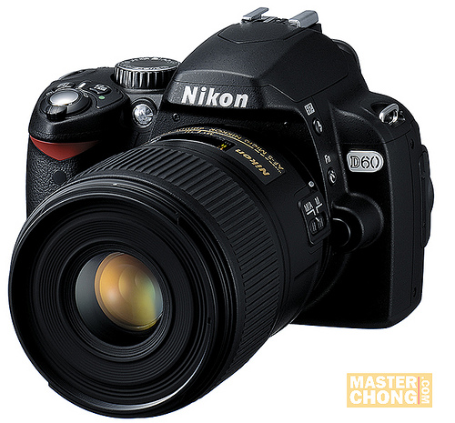 D60 and NIKON'S NEW AF-S MICRO NIKKOR 60MM F/2.8G ED