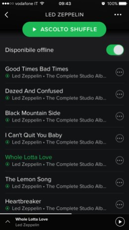 Canzoni Scaricate Offline Spotify