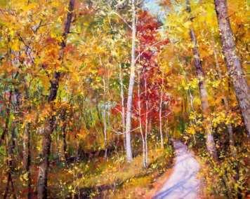 Aspen Trees - Autumn's Golden Carpet (3)