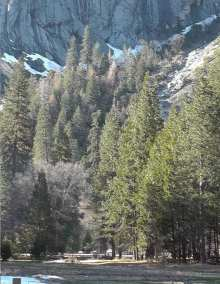 Plein Air - Yosemite National Park