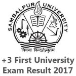 +3 First Year Result 2018