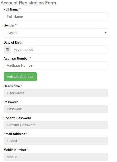 Digitize India Platform Registration Form