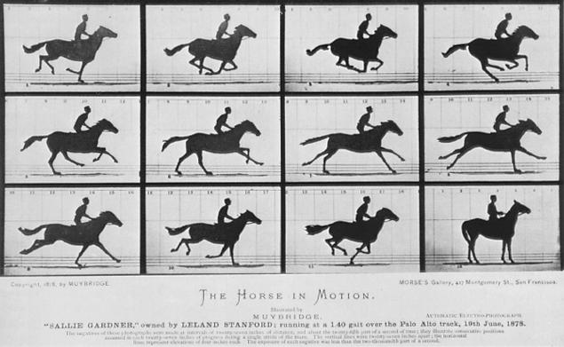 Galloping Horse - 1878