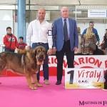 Campeones en Alicante!!