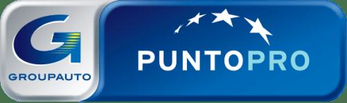 Logo_PuntoPRO_2