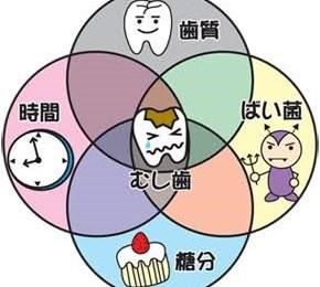 虫歯予防、豊中市、歯科