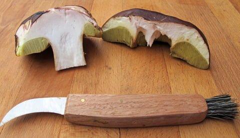 Steinsopp med kniv