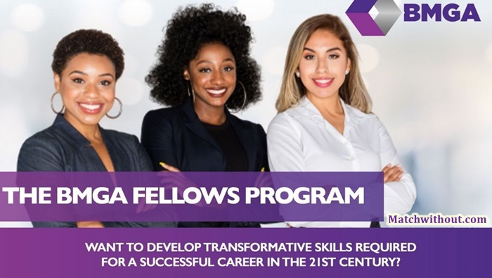 2021 BMGA Fellows Program Application For Young African Women