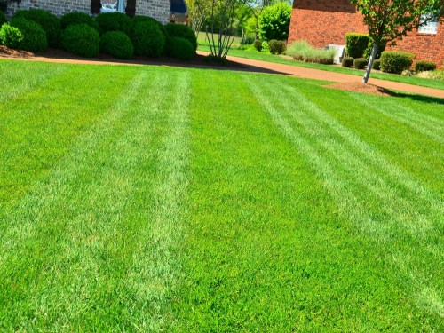 Lawn mowing tips for healthier lawns