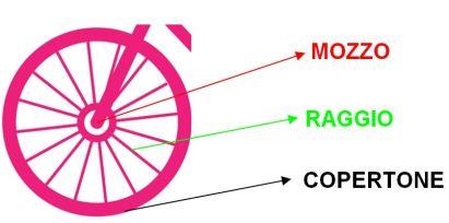 Differenza tra circonferenza e cerchio