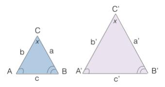 Teorema Di Talete E Poligoni Simili Matematicamente