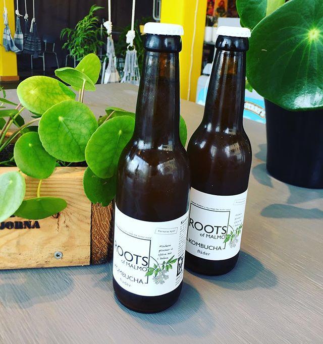 Nu är den äntligen tillbaksa, Roots Fläderkombucha. Sommar paketerat i en flaska #rootskombucha #fläderkombucha #materiapopup #materiamajorna