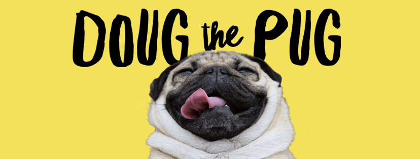 doug-the-pug-pet-influencer