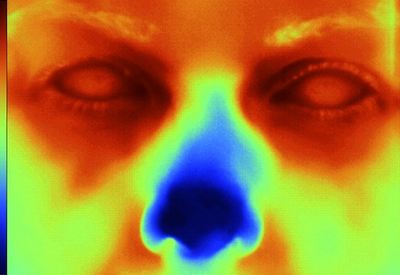 Fotografia termal infravermelha
