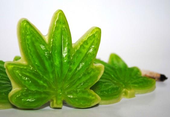 Sabonete de Cannabis sativa