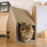 Projeto Krabhuis para casinha de gato feita com papelão reciclável