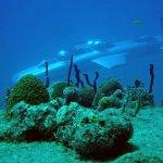 Resort oferece mergulho de submarino em paraíso tropical