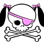 Mulheres também já assumiram o comando da pirataria na internet