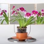 Vaso de cerâmica com espelhos aumenta o volume das flores