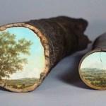 Pinturas em troncos de árvores refletem paisagens como espelhos