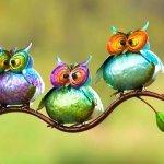 Corujas coloridas de metal em 3D decoram varandas e jardins
