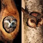 Corujas entalhadas em troncos de árvores e madeira reciclada