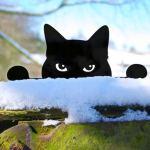 Gato curioso de metal para decorar gramado ou cerca de jardim