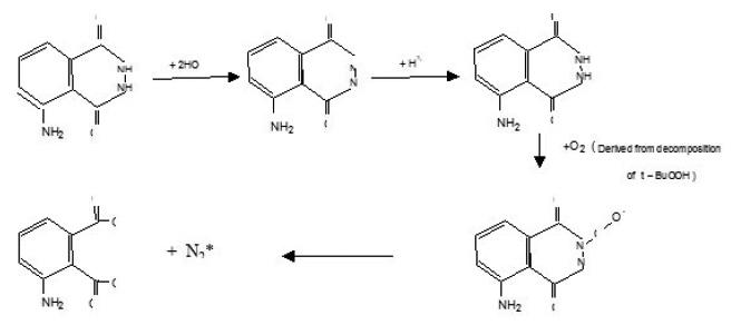 Chemiluminescence Studies of Reaction Between Luminol and