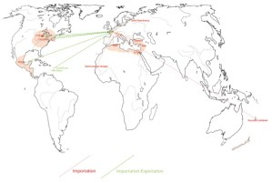 Fig. 1. Eugène Boban's importation and exchanges network, between 1870 and 1890. © Manuel Charpy.