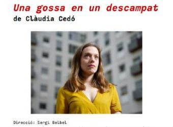 """Dol perinatal: """"Una gossa en un descampat"""" de Clàudia Cedó"""