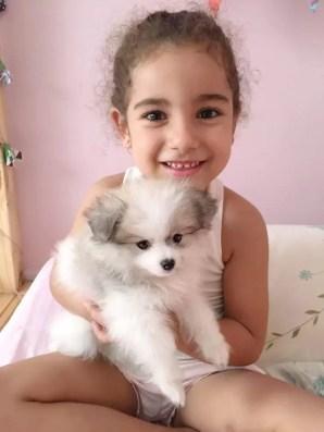 Enquanto Baby 2 não chega, Dog 2 aumenta a família