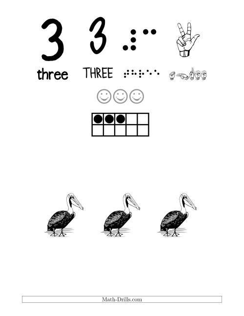 Number 3 Recognition Poster with a Bird Theme (3)