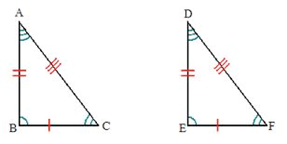Triangles and Congruence Worksheets