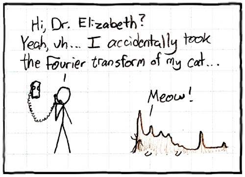 Fourier Transformed my Cat An objective of learning