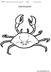 Color a Crab