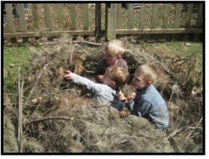 boys in the shrubs