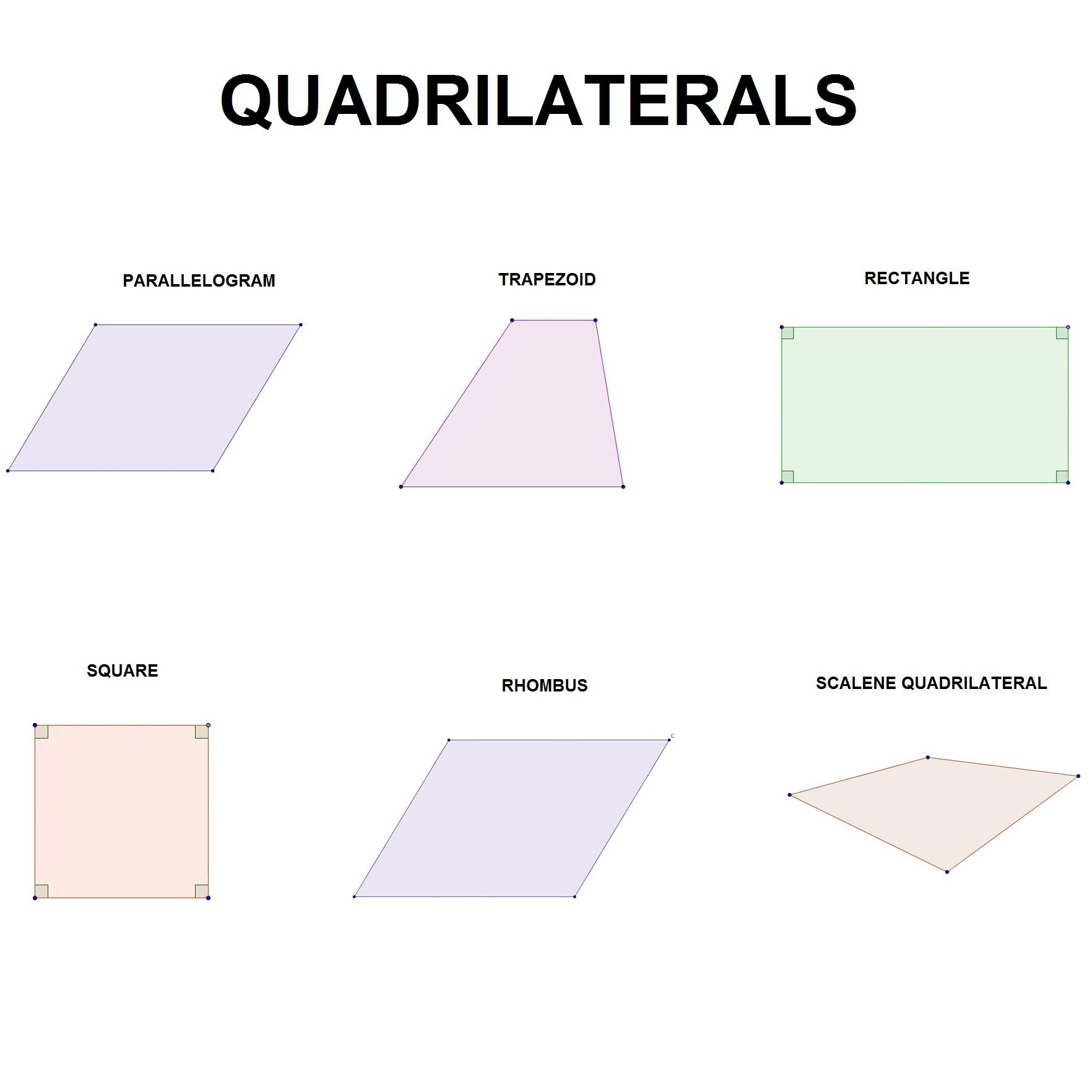 What Are The Types Of Quadrilaterals