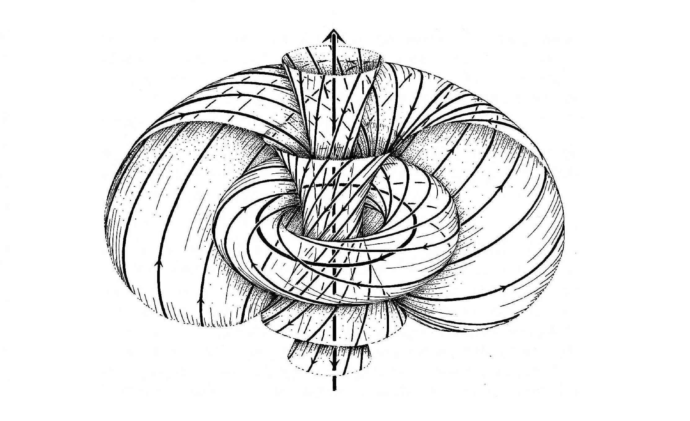 What are some common applications of knot theory in