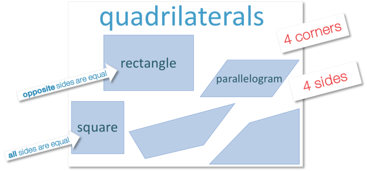 properties of quadrilaterals poster for naming four sided shapes