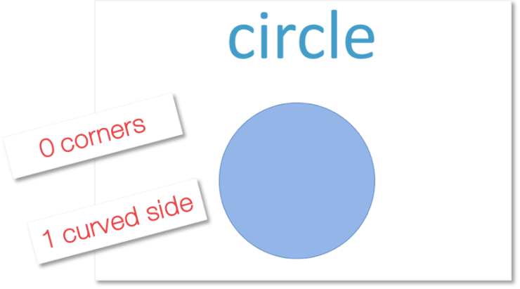 A circle is a shape with no corners and one curved side