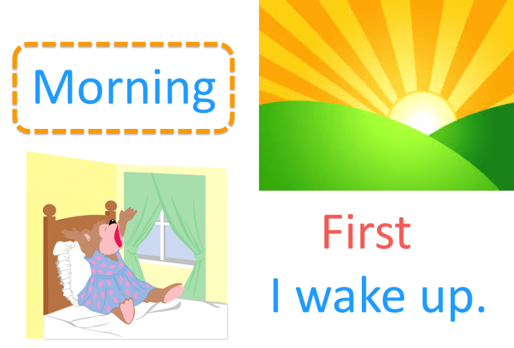Morning is when the sun rises at the start of the day