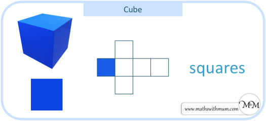 the 6 square faces of a cube with its net